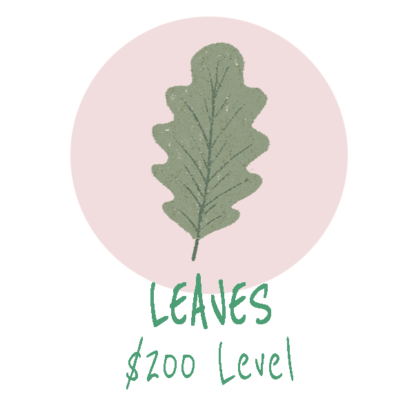 leaves symtp sponsor