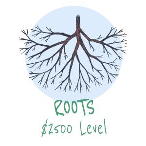 roots symtp sponsor